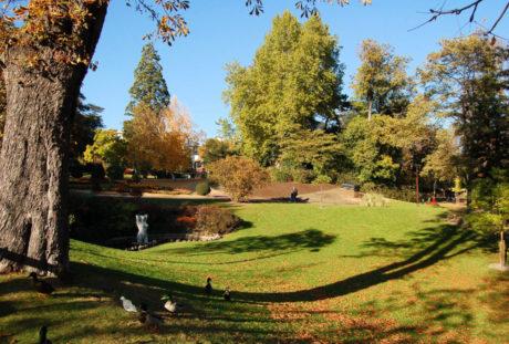 Entretient d'espaces verts et jardins